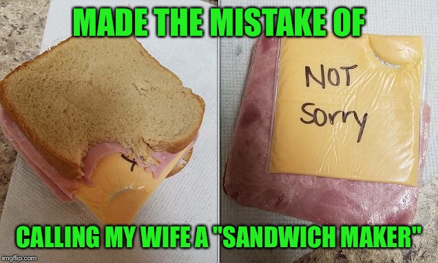 "Dishwasher's actin' up again | MADE THE MISTAKE OF CALLING MY WIFE A ""SANDWICH MAKER"" 