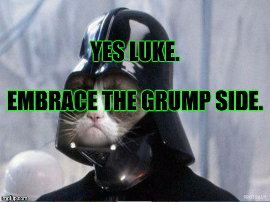 YES LUKE. EMBRACE THE GRUMP SIDE. | made w/ Imgflip meme maker