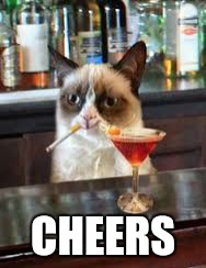 CHEERS | image tagged in memes,grumpy cat | made w/ Imgflip meme maker