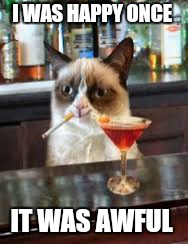 It was the worst of times... | I WAS HAPPY ONCE IT WAS AWFUL | image tagged in memes,grumpy cat,funny animals,happy,taxes | made w/ Imgflip meme maker