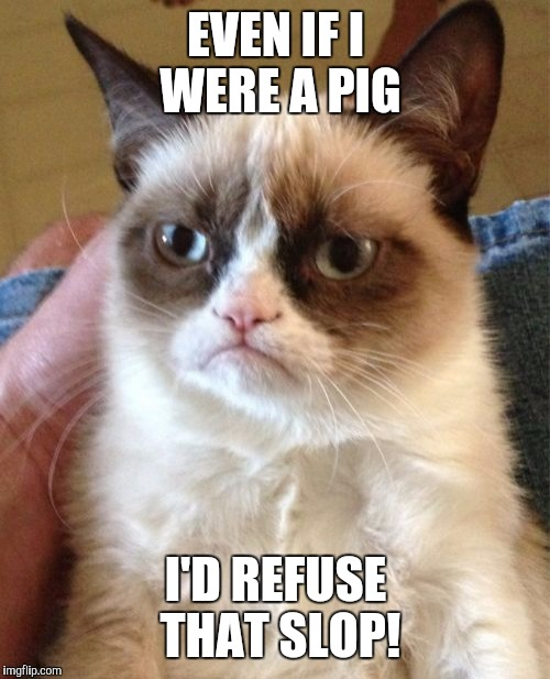 Grumpy Cat Meme | EVEN IF I WERE A PIG I'D REFUSE THAT SLOP! | image tagged in memes,grumpy cat | made w/ Imgflip meme maker