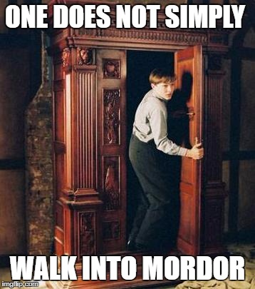 Narnia Guy | ONE DOES NOT SIMPLY WALK INTO MORDOR | image tagged in narnia guy | made w/ Imgflip meme maker