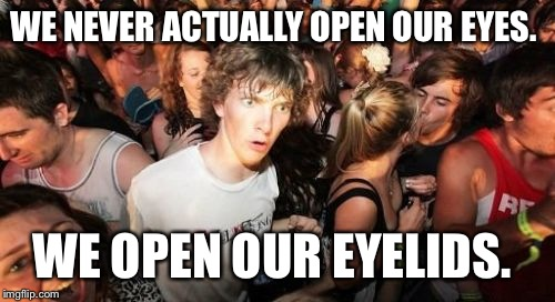 Sudden Clarity Clarence Meme | WE NEVER ACTUALLY OPEN OUR EYES. WE OPEN OUR EYELIDS. | image tagged in memes,sudden clarity clarence | made w/ Imgflip meme maker