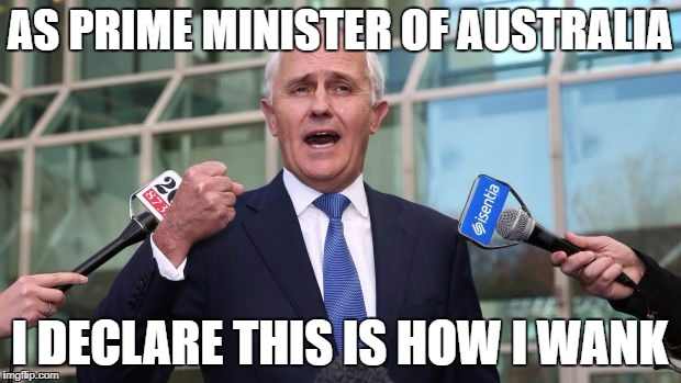 AS PRIME MINISTER OF AUSTRALIA I DECLARE THIS IS HOW I WANK | image tagged in turnbull fisting | made w/ Imgflip meme maker