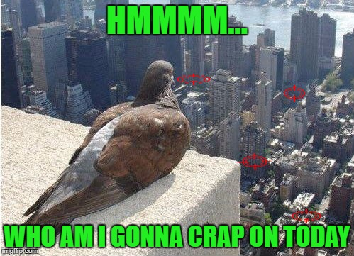 "Who's gonna be the ""lucky"" one? 