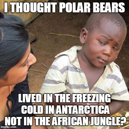 Third World Skeptical Kid Meme | I THOUGHT POLAR BEARS LIVED IN THE FREEZING COLD IN ANTARCTICA NOT IN THE AFRICAN JUNGLE? | image tagged in memes,third world skeptical kid | made w/ Imgflip meme maker