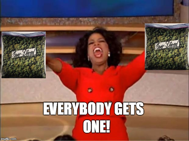 Oprah You Get A Meme | EVERYBODY GETS ONE! | image tagged in memes,oprah you get a | made w/ Imgflip meme maker