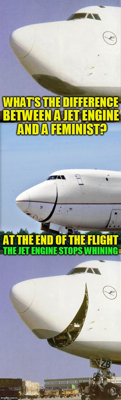 Just Plane Jokes | WHAT'S THE DIFFERENCE AT THE END OF THE FLIGHT BETWEEN A JET ENGINE AND A FEMINIST? THE JET ENGINE STOPS WHINING | image tagged in just plane jokes,memes,feminist,jet,jokes | made w/ Imgflip meme maker