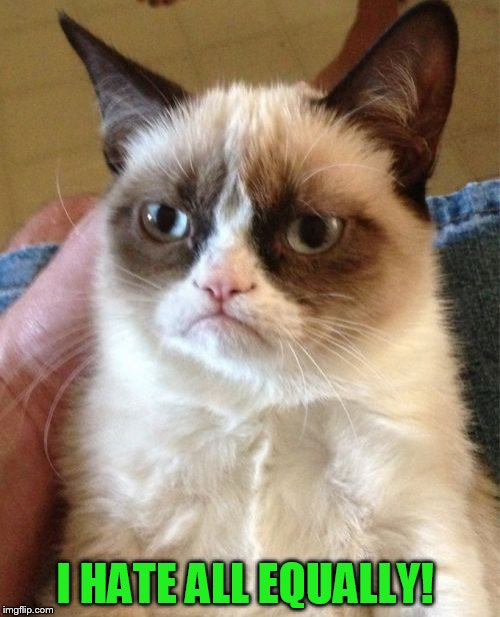 Grumpy Cat Meme | I HATE ALL EQUALLY! | image tagged in memes,grumpy cat | made w/ Imgflip meme maker