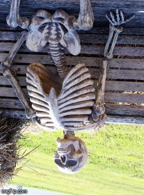 A DEATH IN AUSTRALIA :D | image tagged in funny,waiting skeleton,death,humor,memes | made w/ Imgflip meme maker