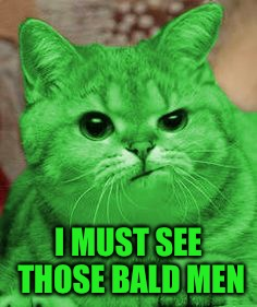 RayCat Annoyed | I MUST SEE THOSE BALD MEN | image tagged in raycat annoyed | made w/ Imgflip meme maker