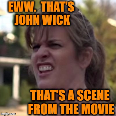 seriously? | EWW.  THAT'S JOHN WICK THAT'S A SCENE FROM THE MOVIE | image tagged in seriously | made w/ Imgflip meme maker