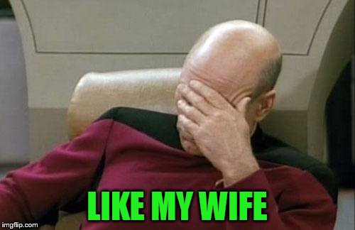 Captain Picard Facepalm Meme | LIKE MY WIFE | image tagged in memes,captain picard facepalm | made w/ Imgflip meme maker