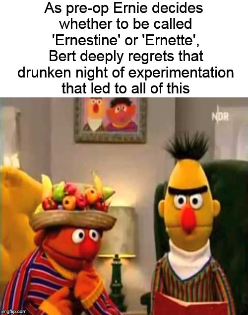 Meanwhile, on Sesame Street.... |  As pre-op Ernie decides whether to be called 'Ernestine' or 'Ernette', Bert deeply regrets that drunken night of experimentation that led to all of this | image tagged in bert and ernie,sesame street,funny memes,memes | made w/ Imgflip meme maker