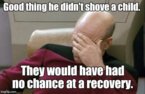 Captain Picard Facepalm Meme | Good thing he didn't shove a child. They would have had no chance at a recovery. | image tagged in memes,captain picard facepalm | made w/ Imgflip meme maker