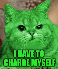 RayCat Annoyed | I HAVE TO CHARGE MYSELF | image tagged in raycat annoyed | made w/ Imgflip meme maker