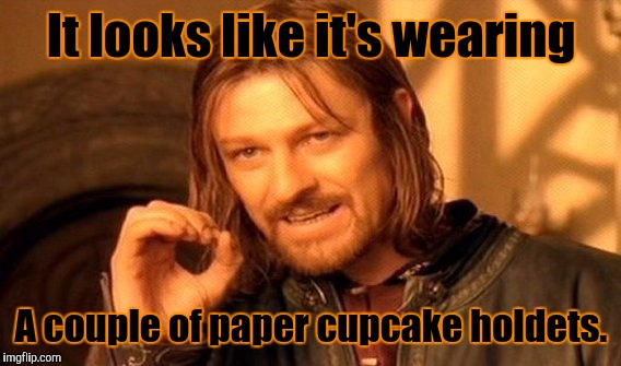 One Does Not Simply Meme | It looks like it's wearing A couple of paper cupcake holdets. | image tagged in memes,one does not simply | made w/ Imgflip meme maker