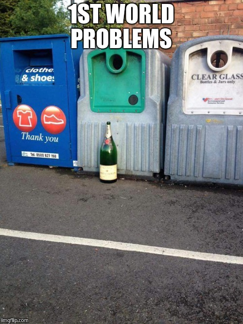 1ST WORLD PROBLEMS | image tagged in 1st world problems | made w/ Imgflip meme maker