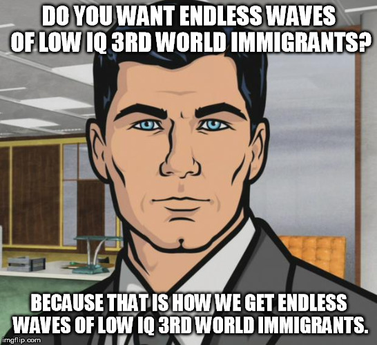 Archer Meme | DO YOU WANT ENDLESS WAVES OF LOW IQ 3RD WORLD IMMIGRANTS? BECAUSE THAT IS HOW WE GET ENDLESS WAVES OF LOW IQ 3RD WORLD IMMIGRANTS. | image tagged in memes,archer | made w/ Imgflip meme maker