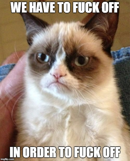 Grumpy Cat Meme | WE HAVE TO F**K OFF IN ORDER TO F**K OFF | image tagged in memes,grumpy cat | made w/ Imgflip meme maker
