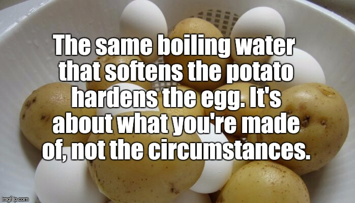 Potatoes vs eggs  | The same boiling water that softens the potato hardens the egg. It's about what you're made of, not the circumstances. | image tagged in jbmemegeek,inspirational quote,quotes,memes | made w/ Imgflip meme maker
