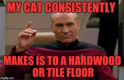 MY CAT CONSISTENTLY MAKES IS TO A HARDWOOD OR TILE FLOOR | made w/ Imgflip meme maker