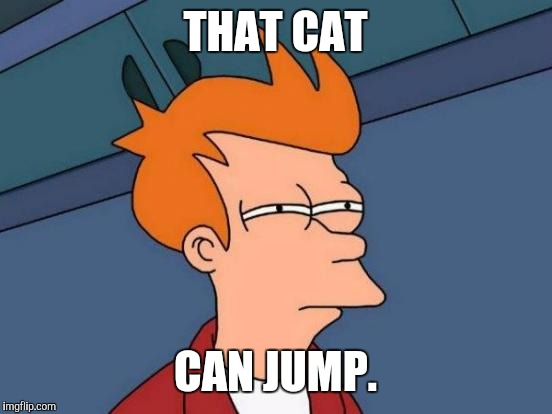 Futurama Fry Meme | THAT CAT CAN JUMP. | image tagged in memes,futurama fry | made w/ Imgflip meme maker