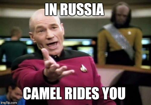 Picard Wtf Meme | IN RUSSIA CAMEL RIDES YOU | image tagged in memes,picard wtf | made w/ Imgflip meme maker