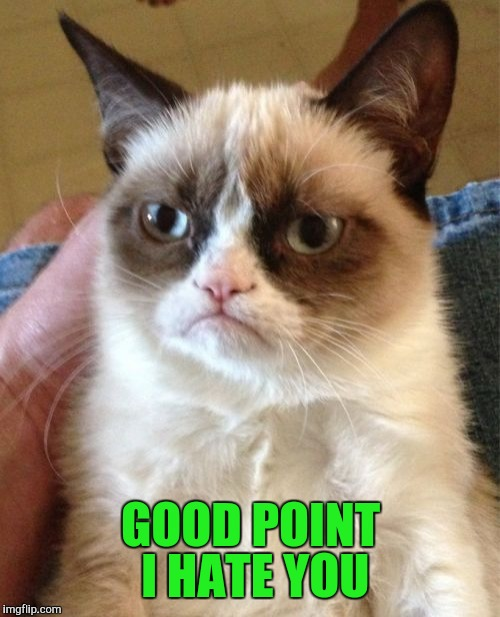 Grumpy Cat Meme | GOOD POINT I HATE YOU | image tagged in memes,grumpy cat | made w/ Imgflip meme maker