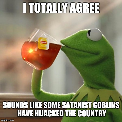 But Thats None Of My Business Meme | I TOTALLY AGREE SOUNDS LIKE SOME SATANIST GOBLINS HAVE HIJACKED THE COUNTRY | image tagged in memes,but thats none of my business,kermit the frog | made w/ Imgflip meme maker