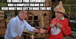 THE GORILLA TURD EXPERIMENT WAS A COMPLETE FAILURE SO I USED WHAT WAS LEFT TO MAKE THIS HAT | made w/ Imgflip meme maker