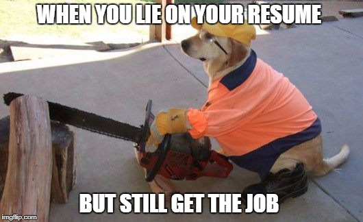 lies on your resume | WHEN YOU LIE ON YOUR RESUME BUT STILL GET THE JOB | image tagged in memes | made w/ Imgflip meme maker