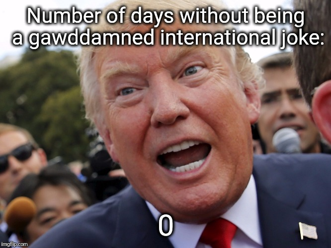 Number of days without being a gawddamned international joke: 0 | image tagged in nevertrump,trump,donald trump,maga,make america great again,hillary clinton | made w/ Imgflip meme maker