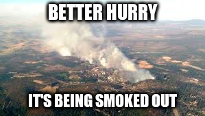 BETTER HURRY IT'S BEING SMOKED OUT | made w/ Imgflip meme maker