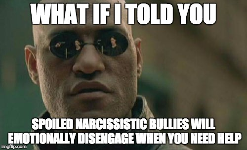 Matrix Morpheus Meme | WHAT IF I TOLD YOU SPOILED NARCISSISTIC BULLIES WILL EMOTIONALLY DISENGAGE WHEN YOU NEED HELP | image tagged in memes,matrix morpheus | made w/ Imgflip meme maker