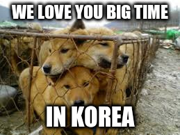 WE LOVE YOU BIG TIME IN KOREA | made w/ Imgflip meme maker