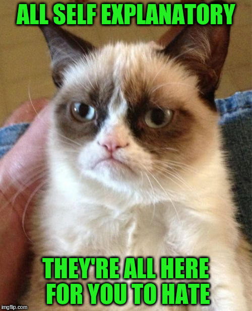 Grumpy Cat Meme | ALL SELF EXPLANATORY THEY'RE ALL HERE FOR YOU TO HATE | image tagged in memes,grumpy cat | made w/ Imgflip meme maker