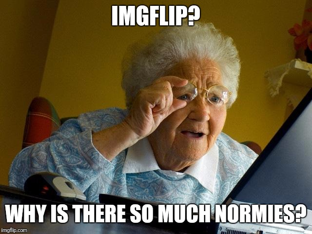 Grandma Finds The Internet Meme | IMGFLIP? WHY IS THERE SO MUCH NORMIES? | image tagged in memes,grandma finds the internet | made w/ Imgflip meme maker