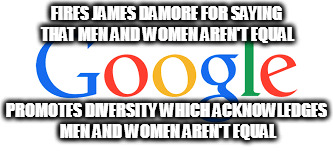 FIRES JAMES DAMORE FOR SAYING THAT MEN AND WOMEN AREN'T EQUAL PROMOTES DIVERSITY WHICH ACKNOWLEDGES MEN AND WOMEN AREN'T EQUAL | image tagged in google james damore diversity men man women woman equality | made w/ Imgflip meme maker