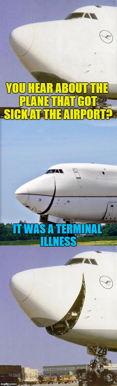 Sick Plane Jokes - Inspired by Dashhopes | YOU HEAR ABOUT THE PLANE THAT GOT SICK AT THE AIRPORT? IT WAS A TERMINAL ILLNESS | image tagged in just plane jokes,memes,airplane,airport,dashhopes | made w/ Imgflip meme maker