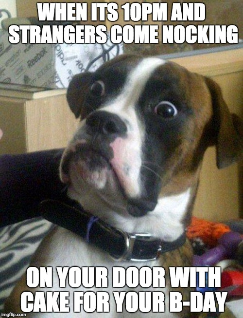 Blankie the Shocked Dog | WHEN ITS 10PM AND STRANGERS COME NOCKING ON YOUR DOOR WITH CAKE FOR YOUR B-DAY | image tagged in blankie the shocked dog | made w/ Imgflip meme maker