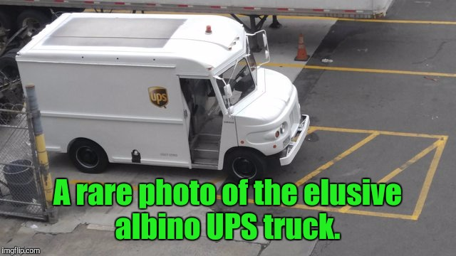 The white UPS truck actually takes packages off your porch.  | A rare photo of the elusive albino UPS truck. | image tagged in funny,white,ups truck | made w/ Imgflip meme maker