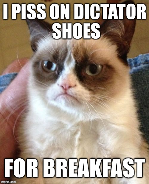 Grumpy Cat Meme | I PISS ON DICTATOR SHOES FOR BREAKFAST | image tagged in memes,grumpy cat | made w/ Imgflip meme maker