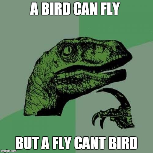Philosoraptor Meme | A BIRD CAN FLY BUT A FLY CANT BIRD | image tagged in memes,philosoraptor | made w/ Imgflip meme maker