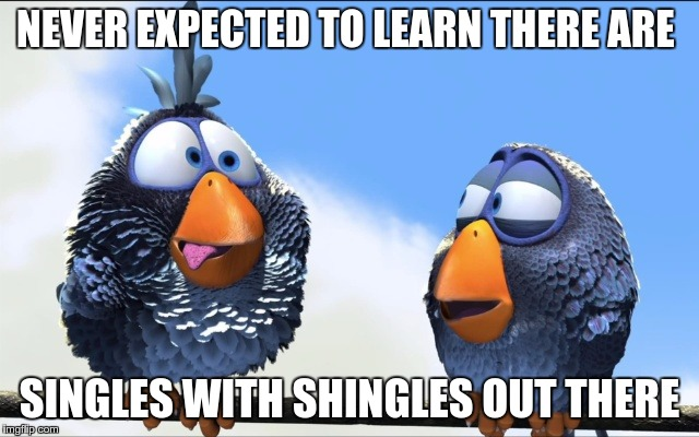 Blue Birds | NEVER EXPECTED TO LEARN THERE ARE SINGLES WITH SHINGLES OUT THERE | image tagged in blue birds | made w/ Imgflip meme maker