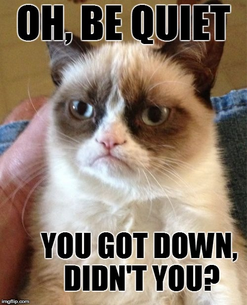 Grumpy Cat Meme | OH, BE QUIET YOU GOT DOWN, DIDN'T YOU? | image tagged in memes,grumpy cat | made w/ Imgflip meme maker