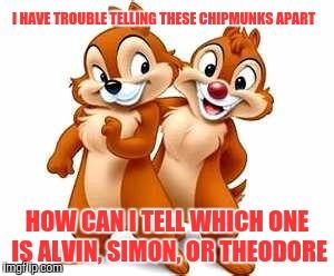 Dale Chipmunk