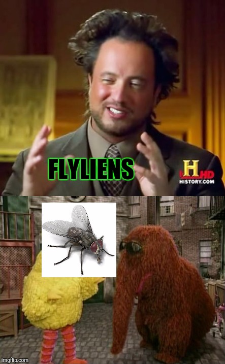 FLYLIENS | made w/ Imgflip meme maker