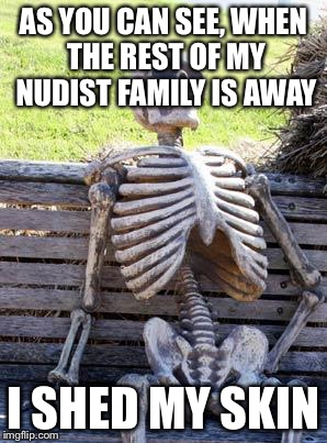WARNING: This may sound painful and horrifying | AS YOU CAN SEE, WHEN THE REST OF MY NUDIST FAMILY IS AWAY I SHED MY SKIN | image tagged in memes,waiting skeleton | made w/ Imgflip meme maker
