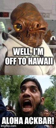 It's A Holiday! | WELL, I'M OFF TO HAWAII ALOHA ACKBAR! | image tagged in its a trap | made w/ Imgflip meme maker